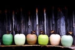 ceramic-cider-apples-by-jon-williams