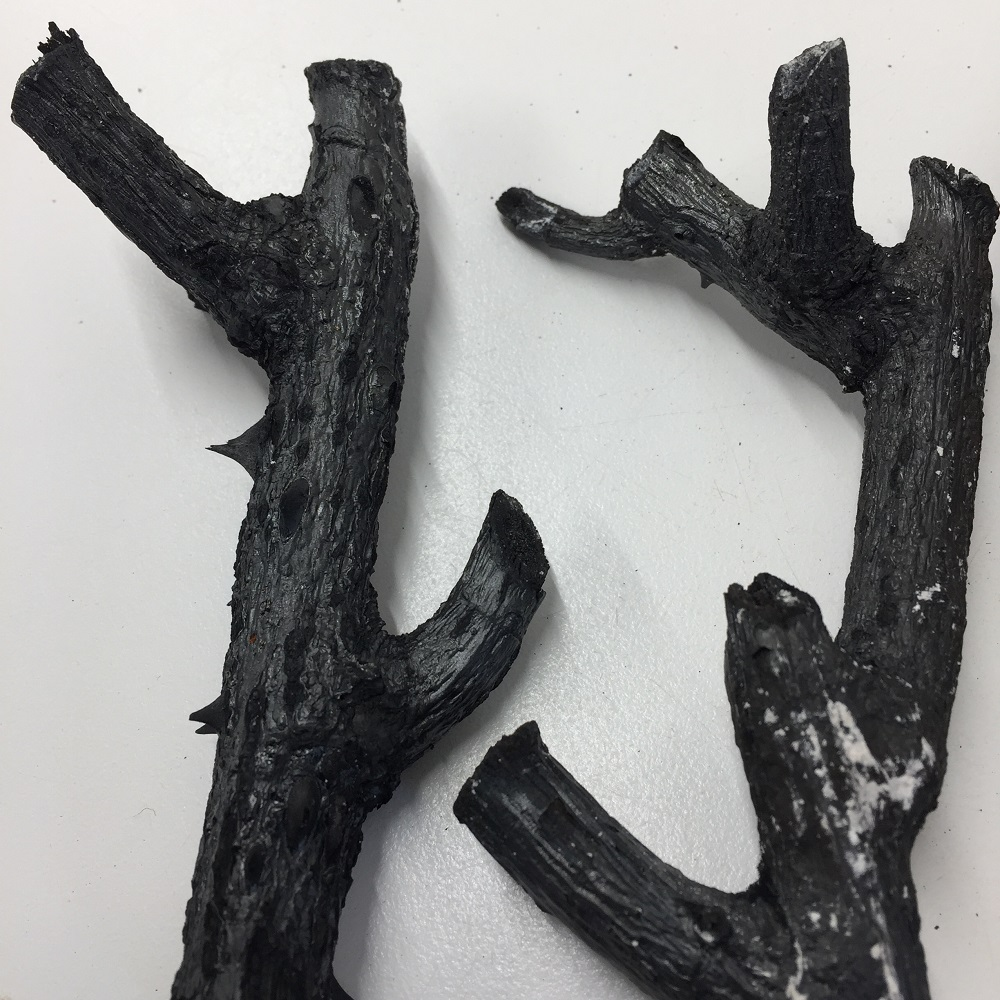 charcoal sticks created by burning twigs from a rose bush