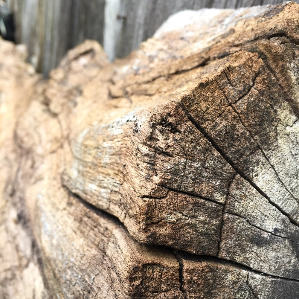 a weathered and textured oak slab at eastnor pottery herefordshire
